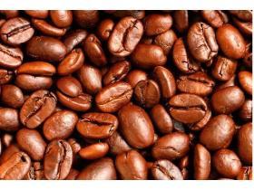 Кофейные зерна для похудения