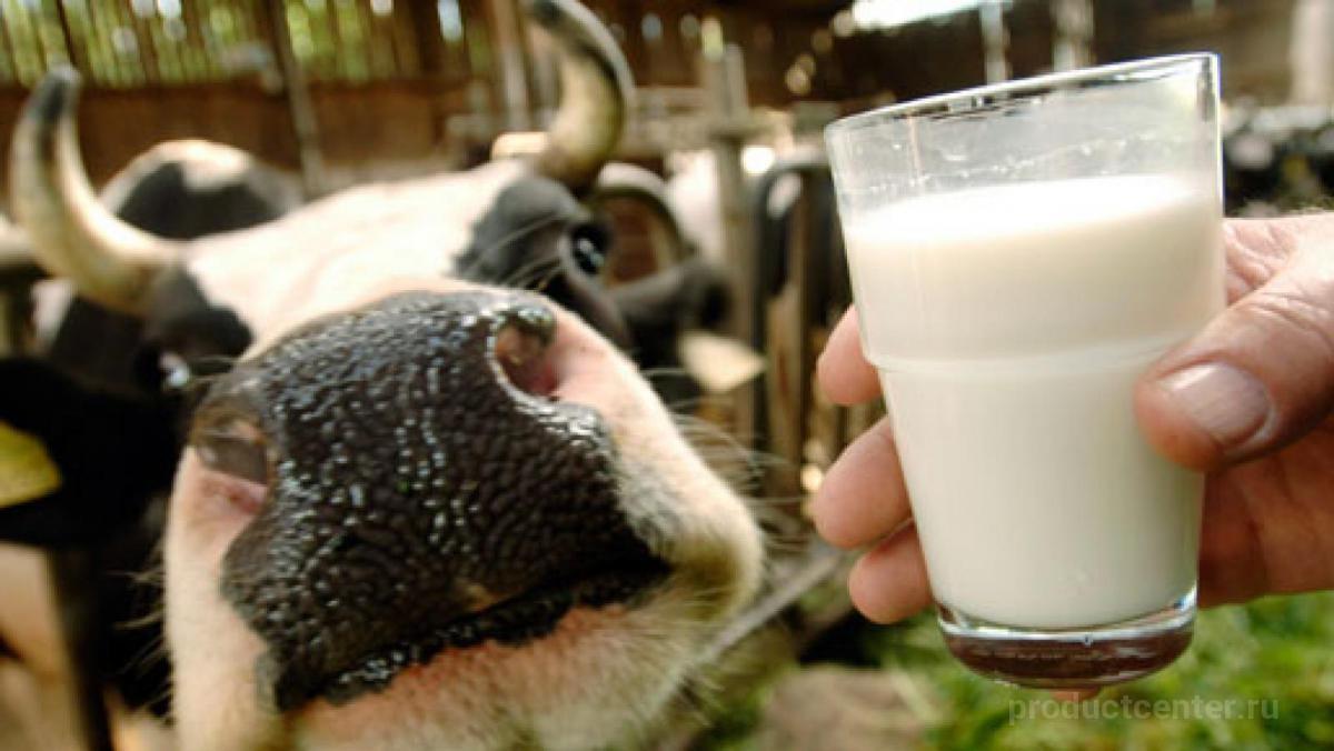 Молоко натурального оптом
