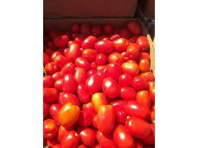 Производители томатов