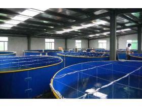 производители оборудования для рыбоводства